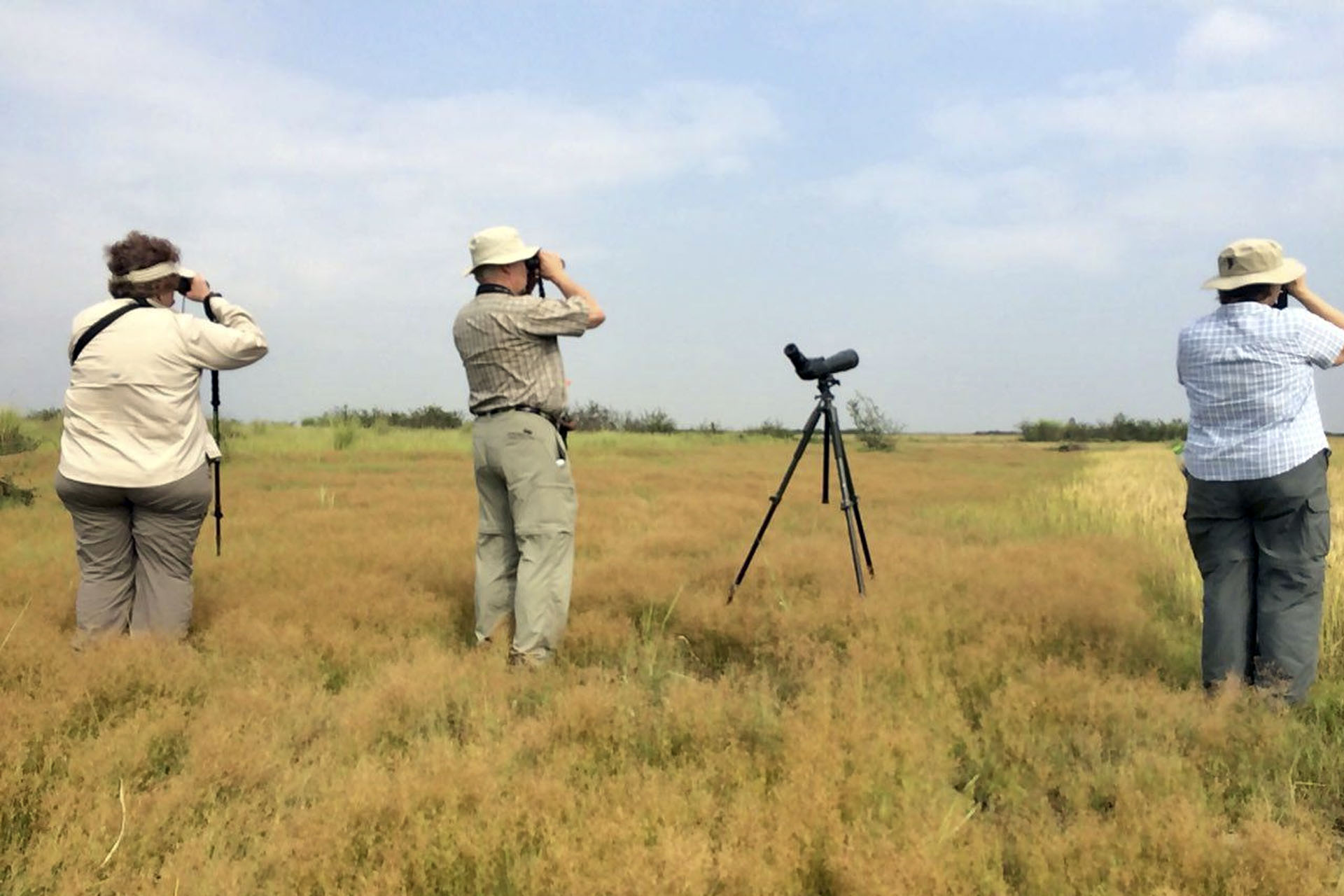 Birding at Florican Grassland