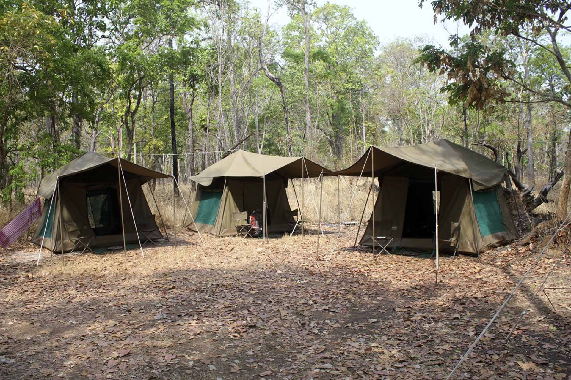 Safari Style Tents at Boeng Toal